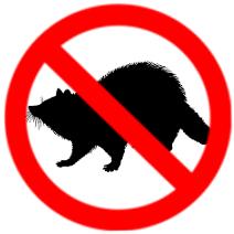 Wildlife Removal Cambridge